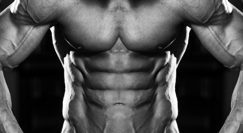 what do fat burners do for you