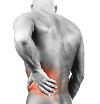 What Exercises Strengthen the Lower Back?