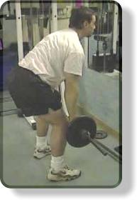 Start position for the barbell bent-over row for the back.
