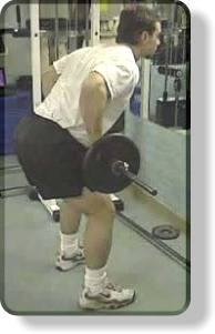 Top position for the barbell bent-over row for the back.